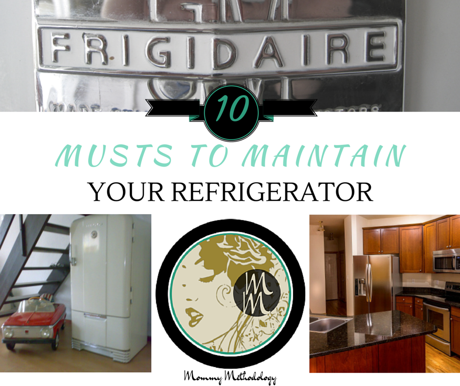 10 Musts to Maintain Your Refrigerator