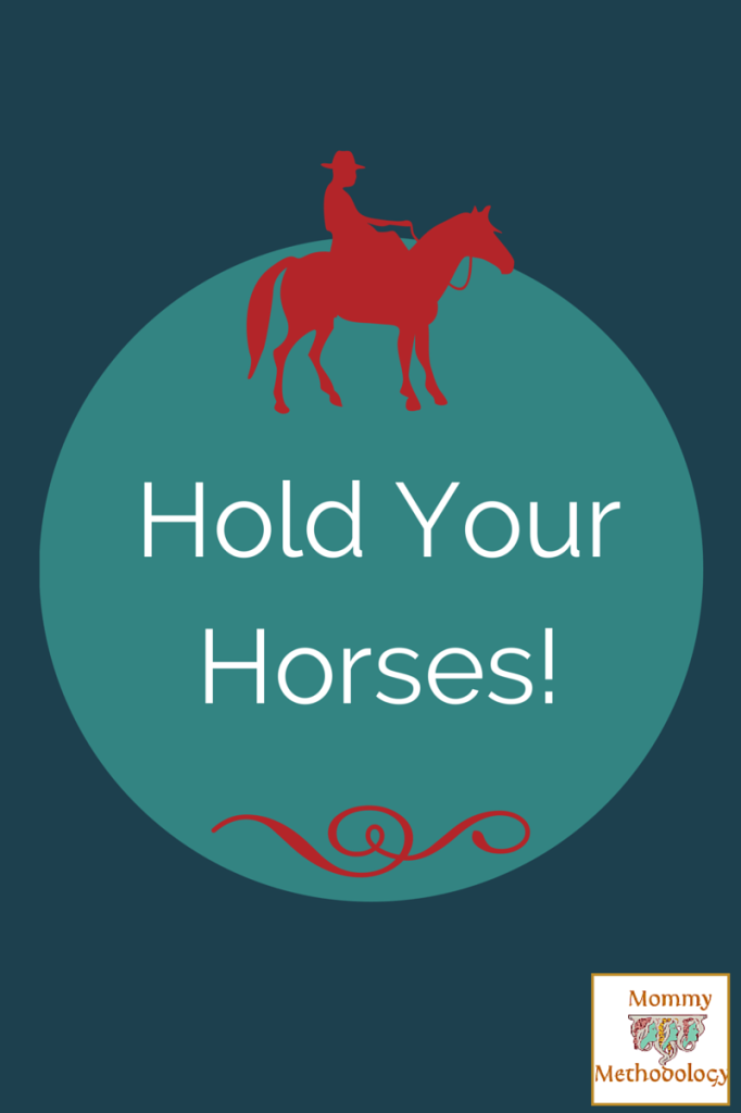 Sunday & Southern Monthly ~ Hold Your Horses