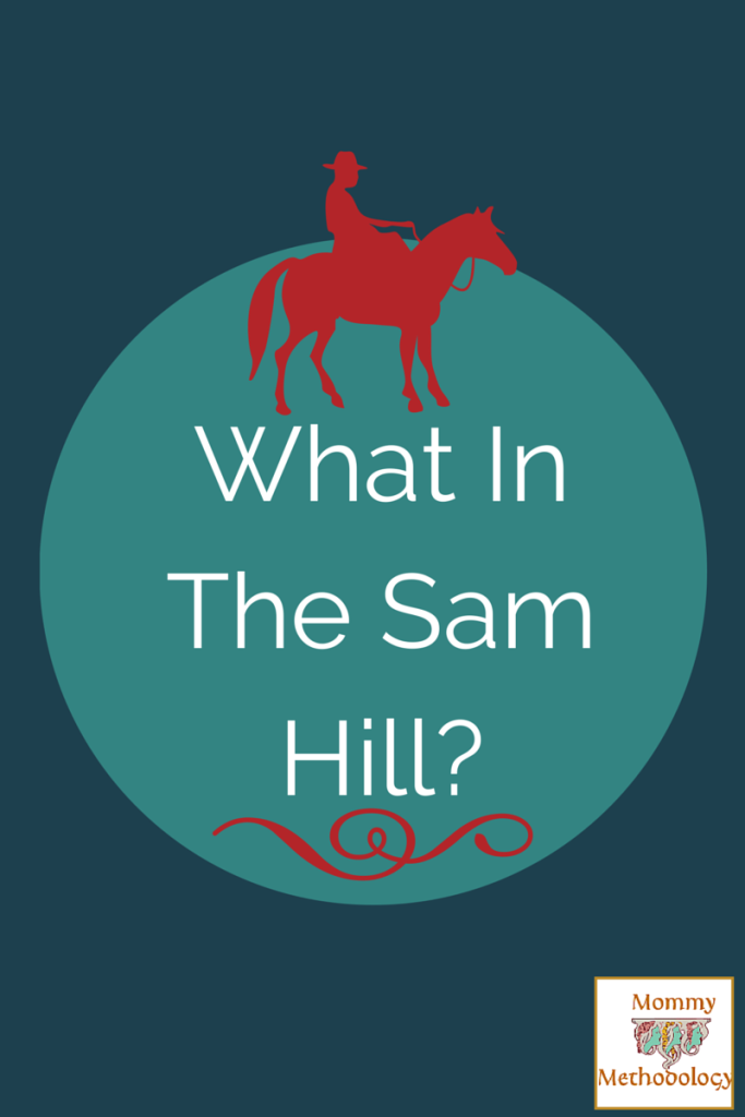 Sunday & Southern Monthly ~ What in the Sam Hill?
