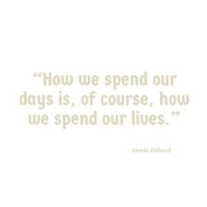 Annie Dillard Quote (1)